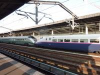 JR East E3 and E2 series Shinkansen